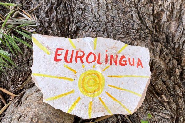 Eurolingua Hilda - Adopt an olive tree