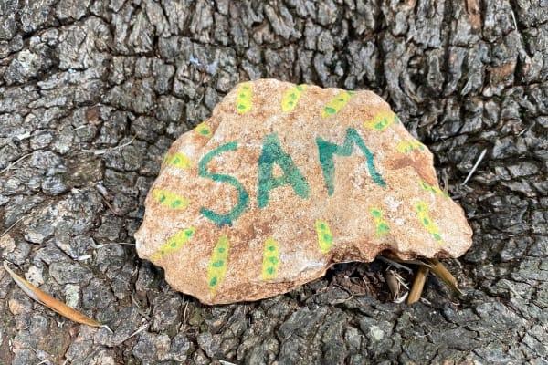 SAM - Adopt an olive tree