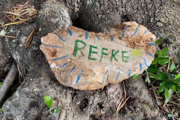 Refke - Adopt an olive tree